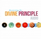 Preview: Discovering the Divine Principle - Audio CD